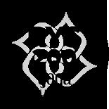 reinier-dorrepaal-rys-200-yoga-alliance